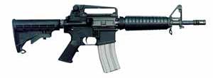 Buy Bushmaster A2 Entry Carbine