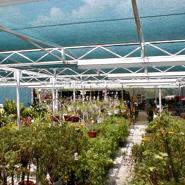 Buy Greenhouses