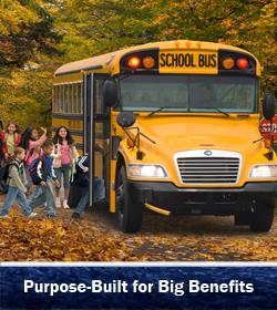 Buy Blue Bird Vision Buses