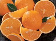 Buy Valencia Oranges