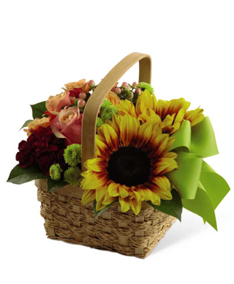Buy Bright Day Basket