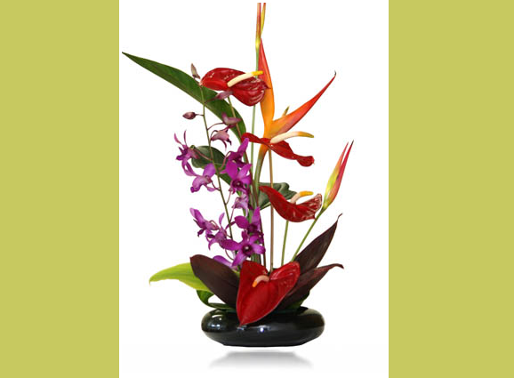 Buy Mahalo Flowers