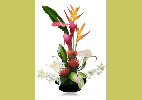 Buy Makuahine Mother Flowers
