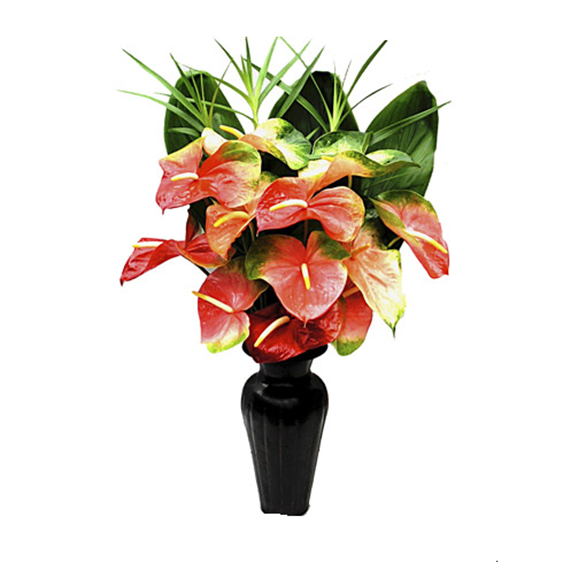 Buy 1 Dozen Obake Anthurium With Foliage Вouquet