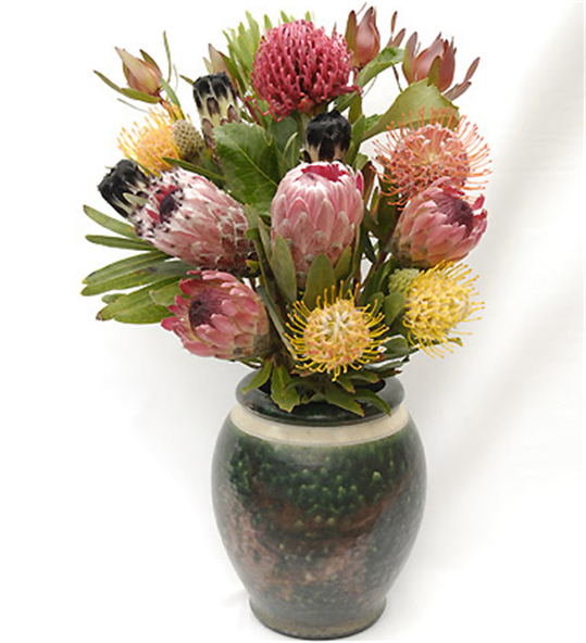 Buy 12 Assorted Protea Flowers and Foliage Вouquet