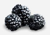 Buy Blackberries
