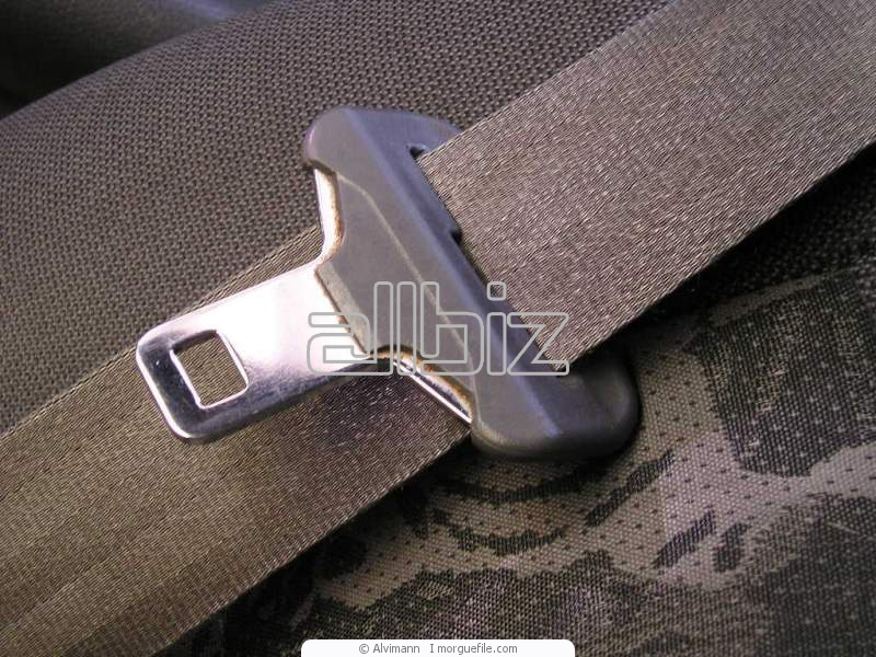 Buy Endless Precision Drive Belts