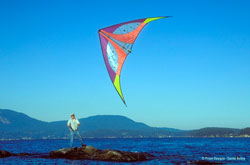 Buy Stunt Kites