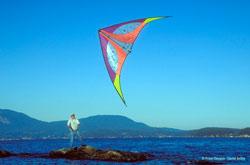 Buy Stunt Kites