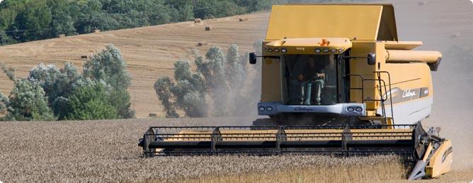 Buy Challenger Combine Harvesters