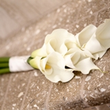 Buy Five Large Calla Lily Hand Tied Bouquet
