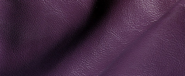 Buy Padovanelle Leather