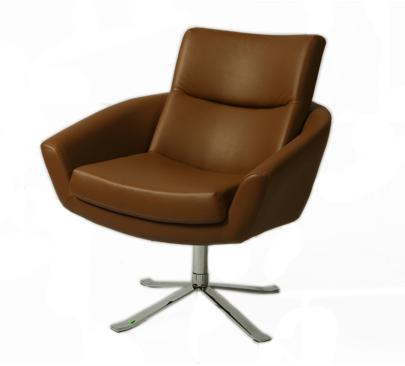 Buy Aliante Club Chair in Brown