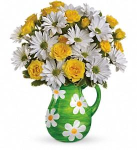 Buy Teleflora's Happy Daisies Bouquet