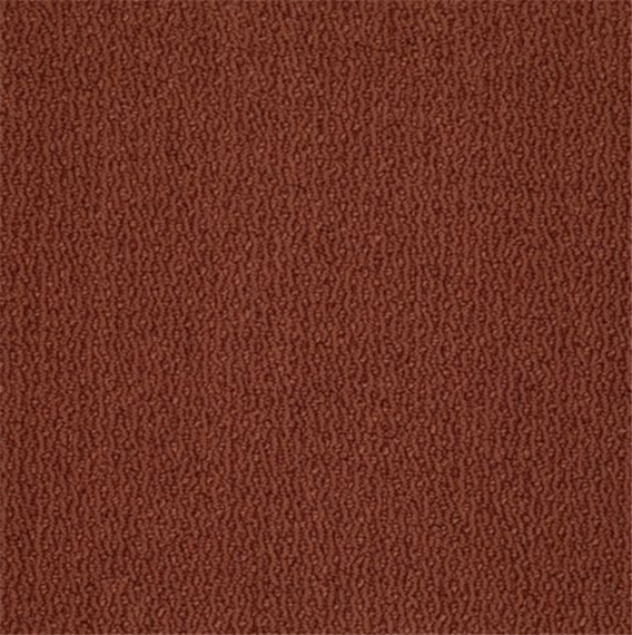 Buy Camden Drive Tuftex Carpet