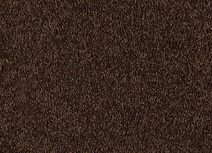 Buy Supreme Intellect Mohawk Carpet