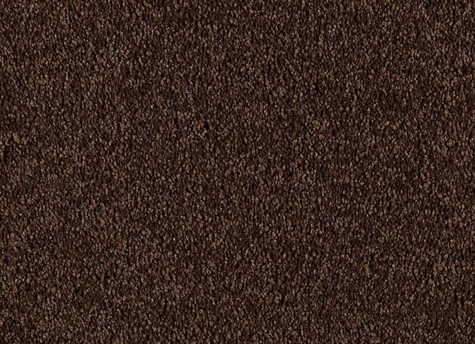 Buy Supreme Intellect Mohawk Carpet