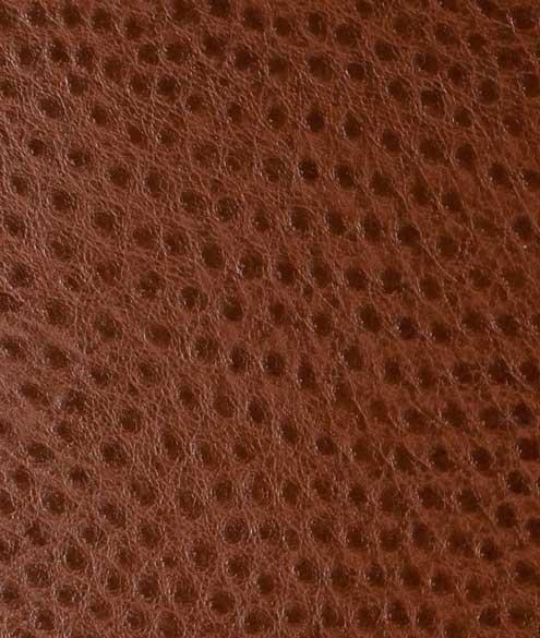 Buy Premium Leather
