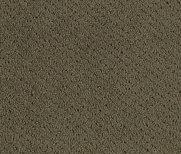 Buy Floor Carpets