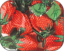 Buy Strawberry Filled Hard Candy