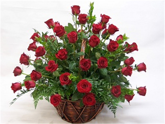 Buy 60 Red Roses