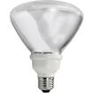 Buy Compact Fluorescent Floods/Reflectors