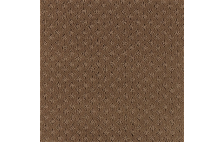 Buy Compliment / New Penny Carpet