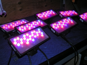 Buy Color Kinetics LED Colorblast 12