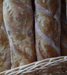 Buy Florapan® Baking Cultures