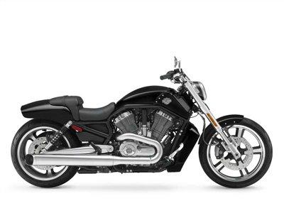 Buy 2013 H-D® VRSCF V-Rod Muscle® Motorcycle