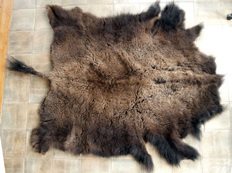 Buy Bison hide - Machine Pulled - Brine Cured