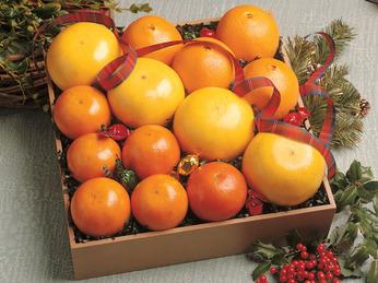 Tasty Trio Oranges Assortment