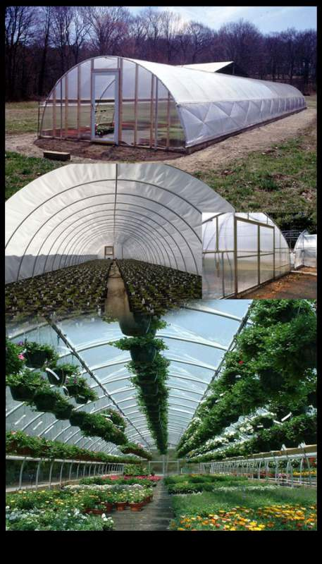 Buy Inflation Buster Arch Greenhouse
