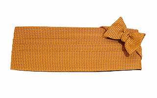 Buy Gold Ground with Autumn Orange and Chocolate Neat Design Cummerbund Sets