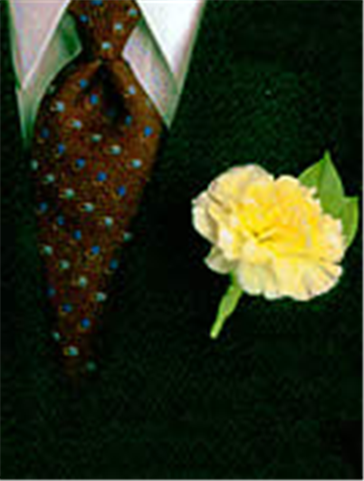 Buy One Carnation Boutonniere