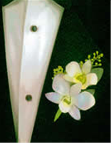 Buy Two Dendrobium Orchid Boutonniere