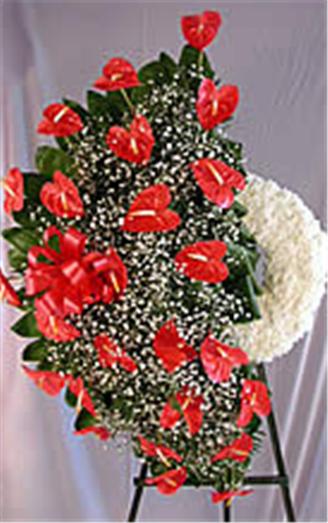 Buy Anthurium Wreath