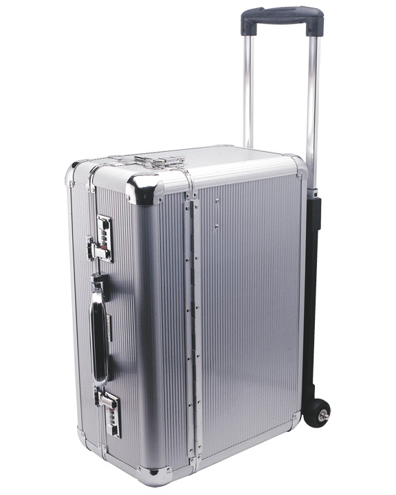 Buy Aluminum Beauty Case