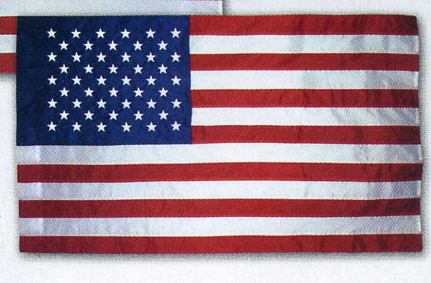 Buy 2 1/2 X 4 Ft US Nyl-Glo With Pole Sleeve Flag