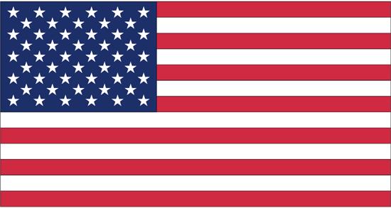 Buy 4x6 Ft Nyl-Glo US Flag