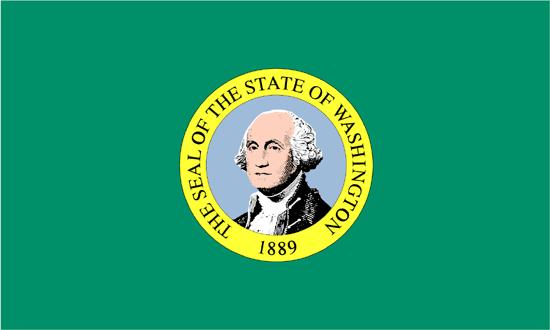 Buy 10x15 Ft Nylon Washington Flag