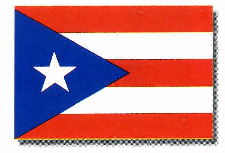Buy 2x3 Ft Nyl-Glo Puerto Rico Ffp Flag