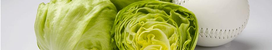 Buy Iceberg Babies® Lettuce
