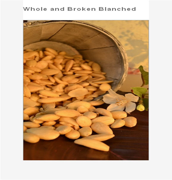 Buy Whole and Broken Blanched Almonds