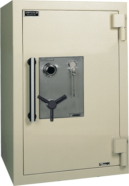 Buy Amvault TL-15 and TL-30 Safes
