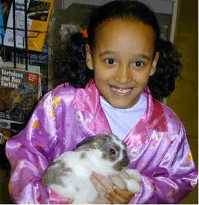 Buy Bunny Pet