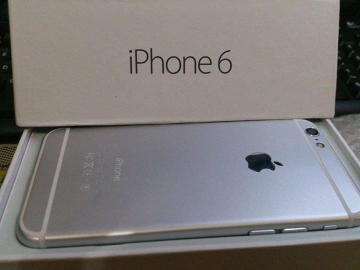 Buy Apple iPhone 6 Plus (Latest Model) - 64GB