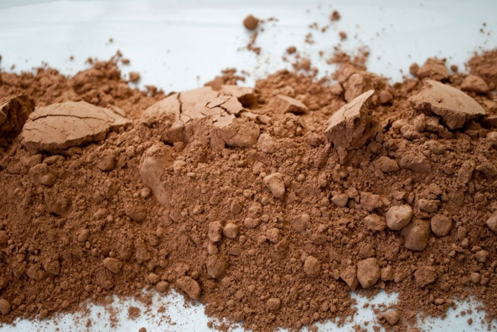 Buy Akalize Cocoa Powder