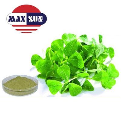 Buy Organic Alfalfa Grass Juice Powder