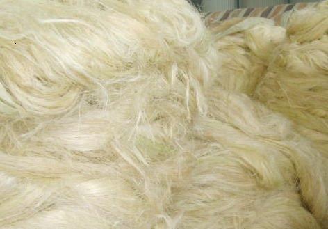Buy Sisal fiber